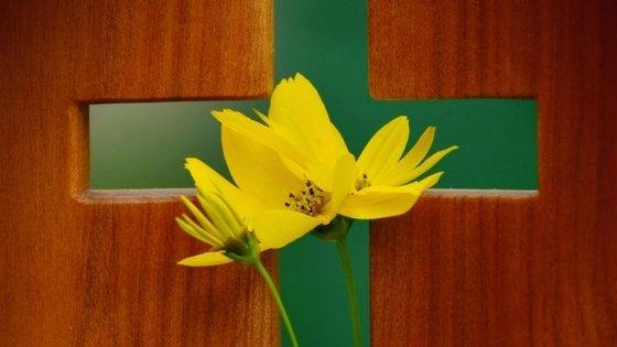 Cross and daffoldils